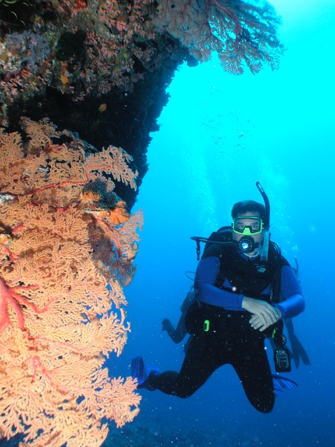 ESchreoder_diving.jpg